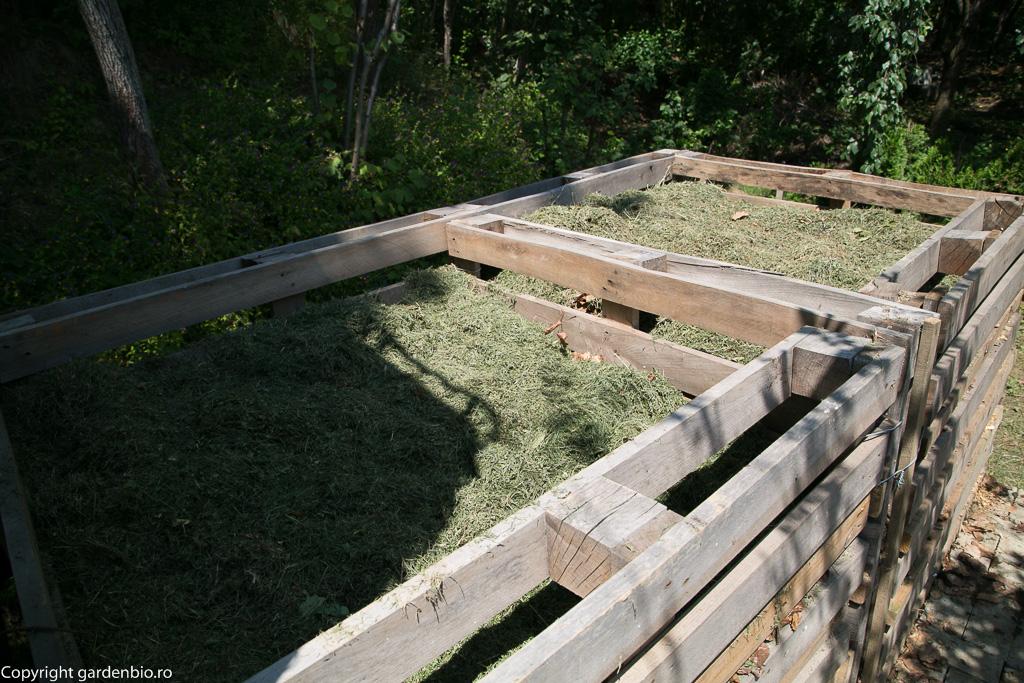 Iarba, materia organică verde, accelerează procesul de compostare.