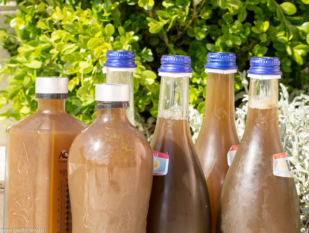 Sticle inchise etans cu extract de urzica