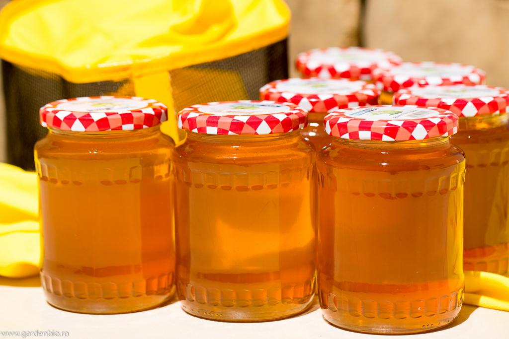 Prima de recoltă de miere cu un gust și aromă deosebite