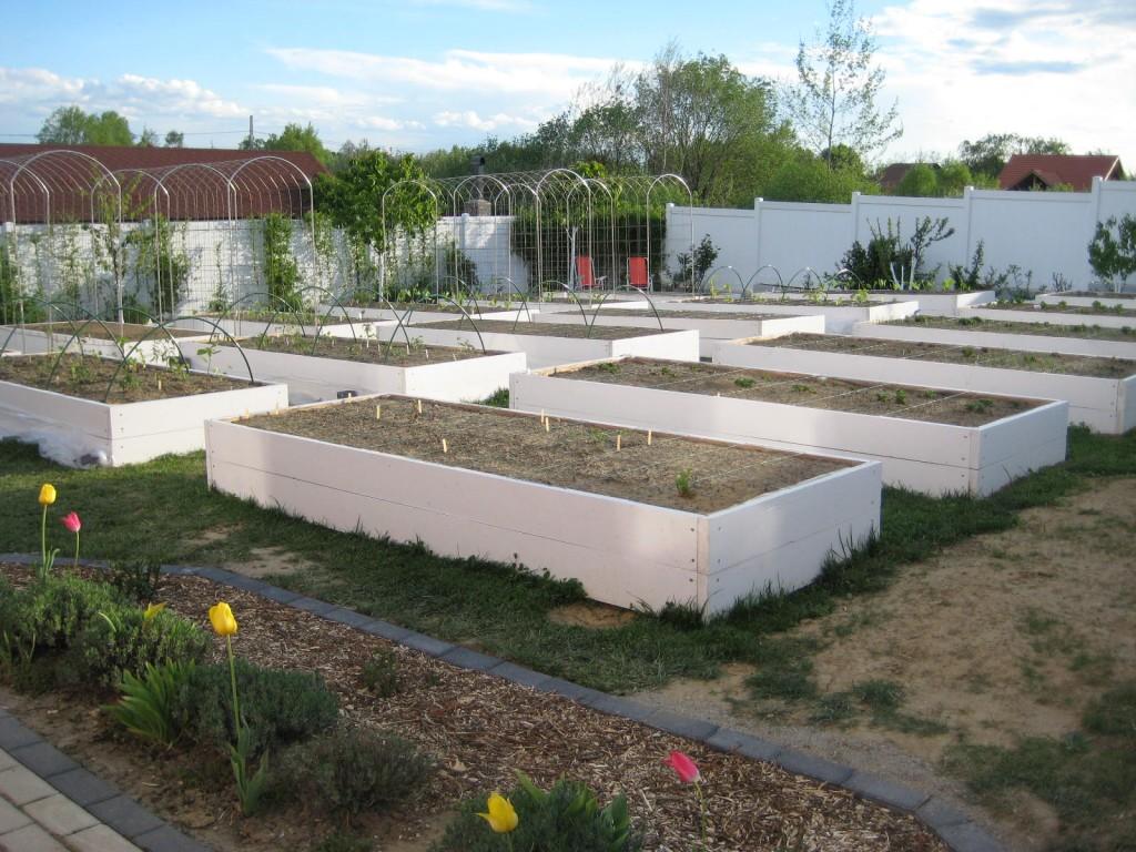 Grădina se conturează