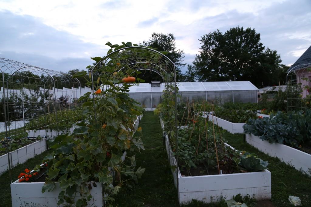 Grădina seara