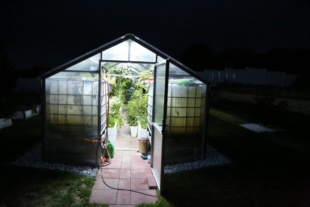 Sistemul de iluminare din seră permite desfășurarea activității și pe timp de noapte