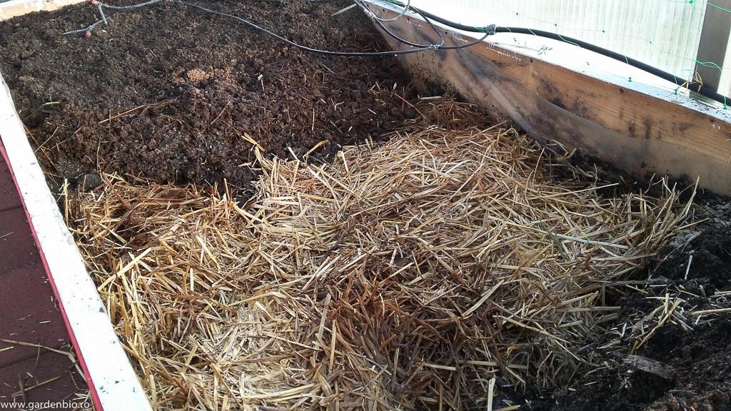 Stratul final de 10-15 cm - amestec de compost fin (cernut prin sită), turbă și nisip