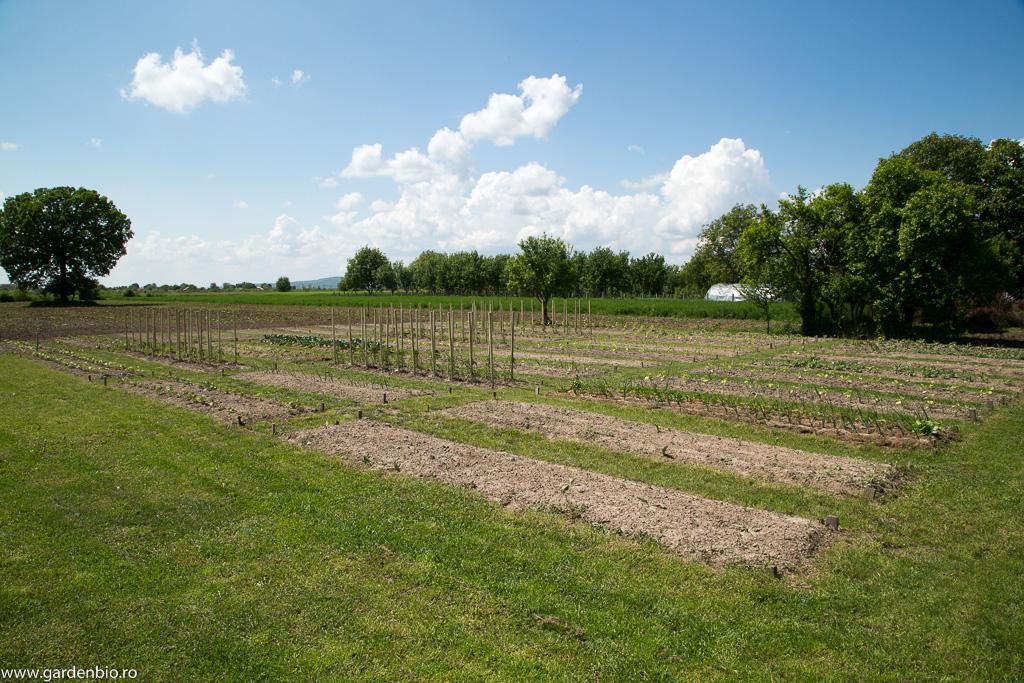 Straturile din grădina de la țară pregătite în primăvară pentru un nou sezon