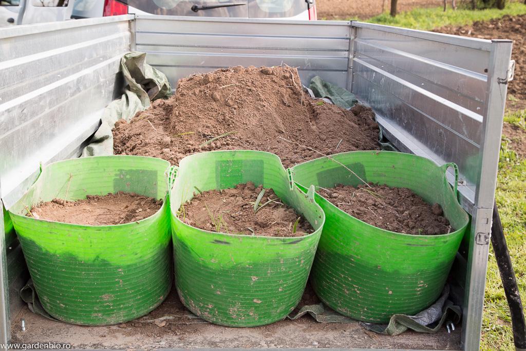 Pămantul de pădure adus cu remorca până la straturile din grădină