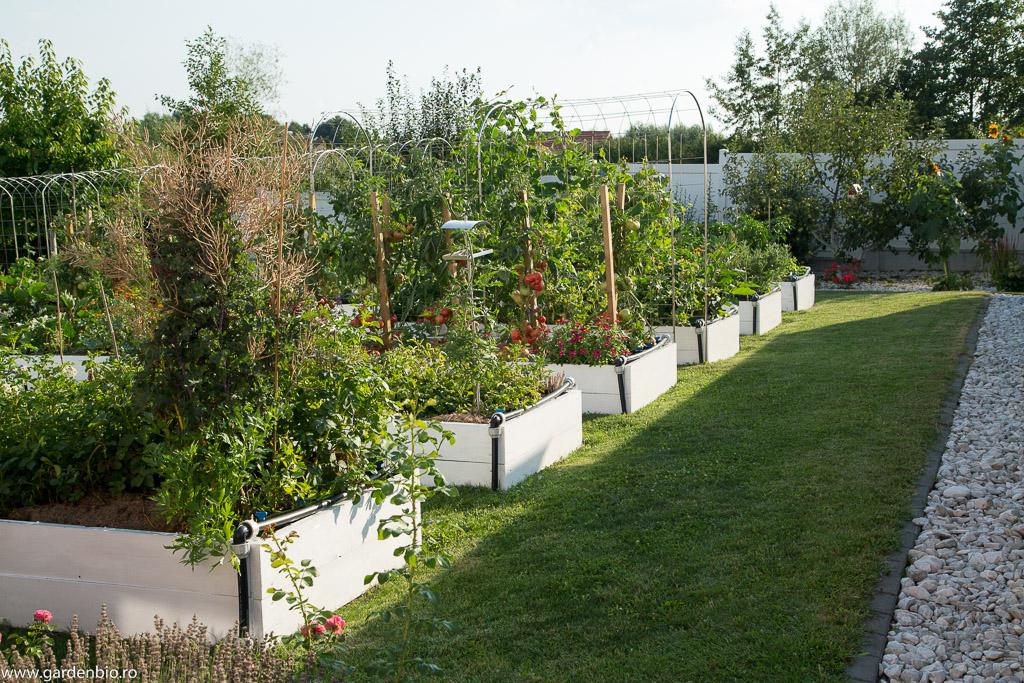 Grădina la sfârșit de iulie