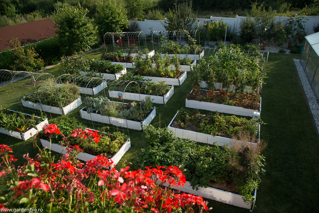 Proiectarea gradinii – straturi inaltate (raised beds)