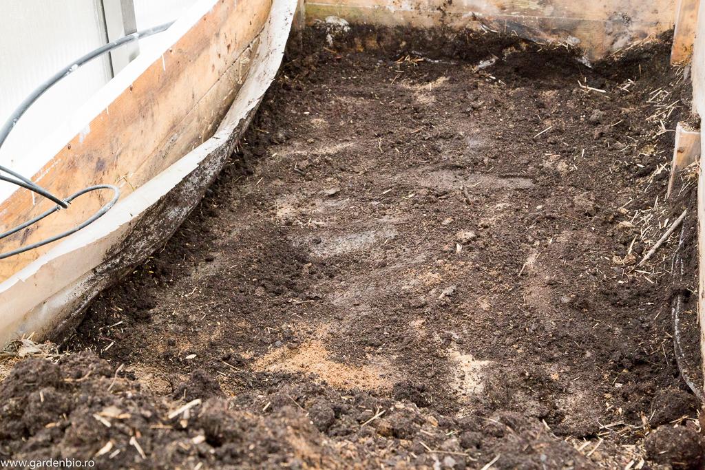 Straturile înălţate din seră le golesc pentru a le umple cu biocombustibil - gunoi de cabaline, paie, resturi vegetale