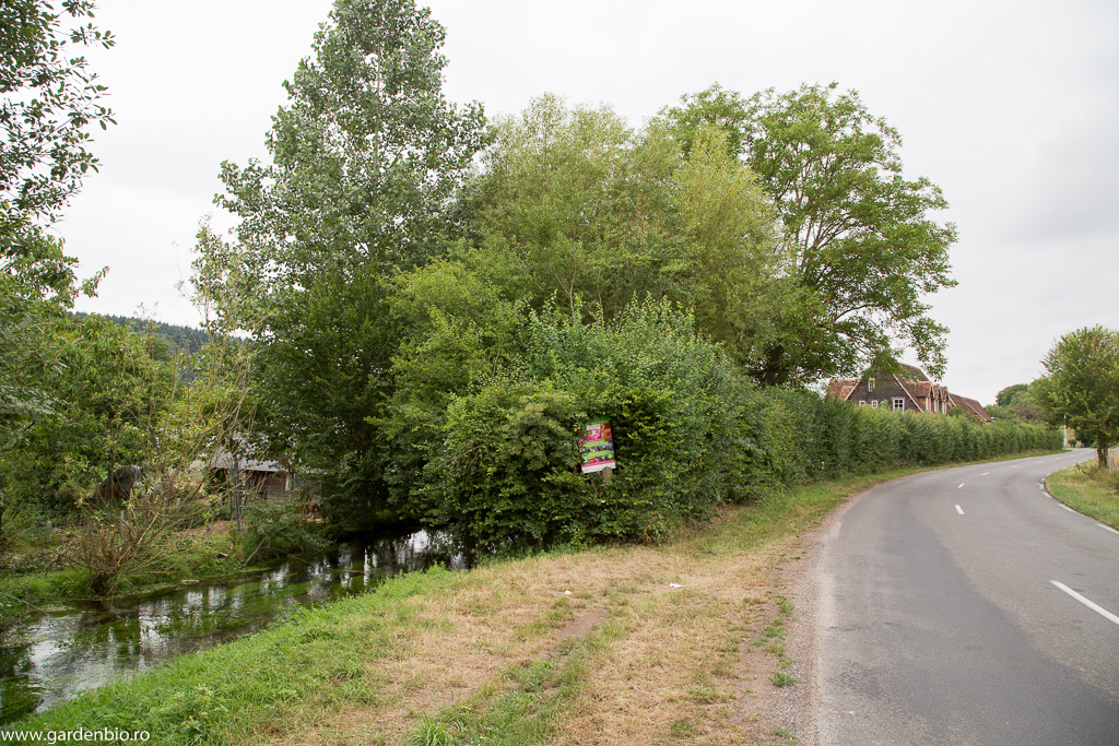 Ferma Bec Hellouin este situată în Normandia, într-o zonă foarte pitorească