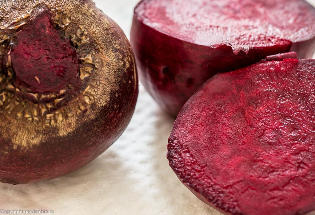 Sfecla rosie pregatita pentru prepararea unui suc proaspat BIO