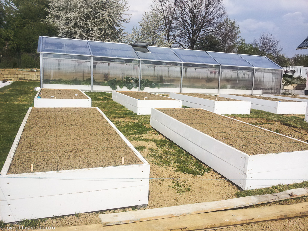 Straturile pregatite pentru plantarea primelor rasaduri de legume
