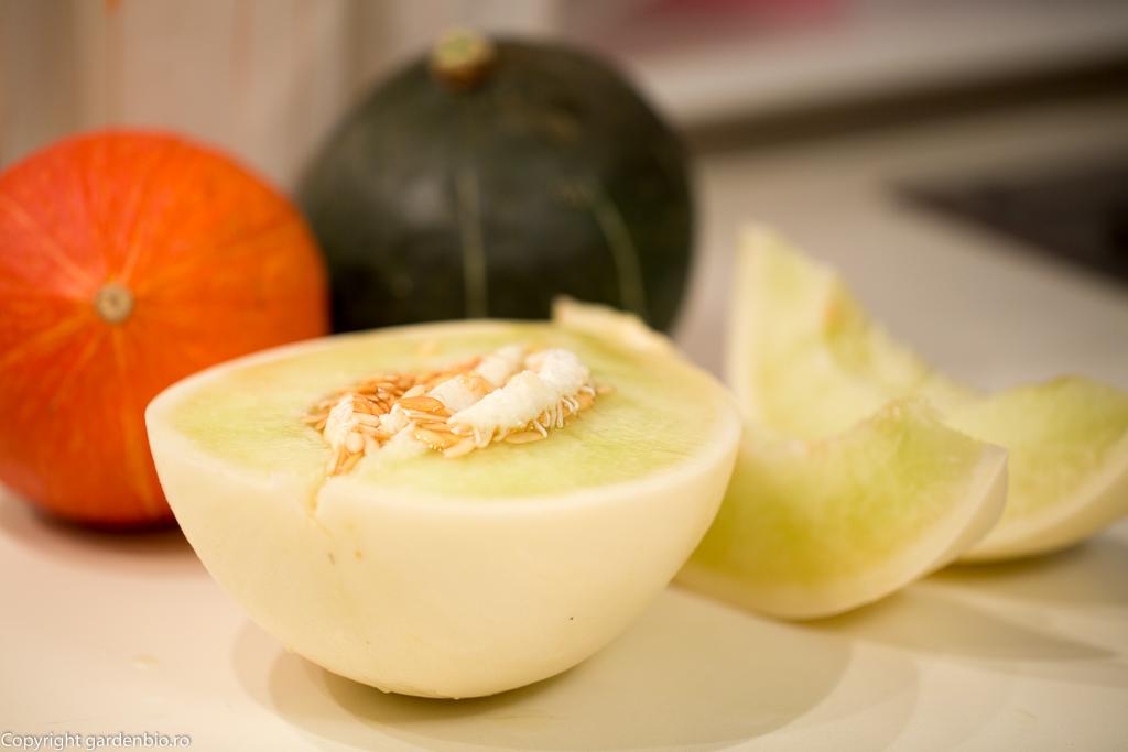 Un pepene din sera super delicios - Honeydew Green Flesh.