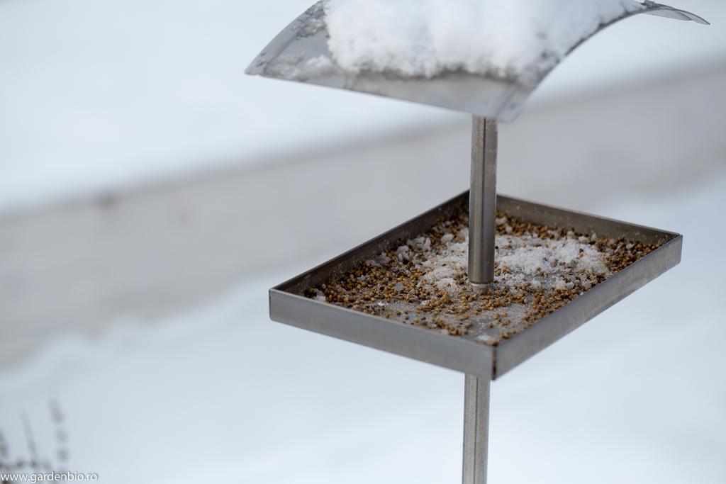 Suportul pentru semințe - o ispită prea mare pentru pițigoi :)