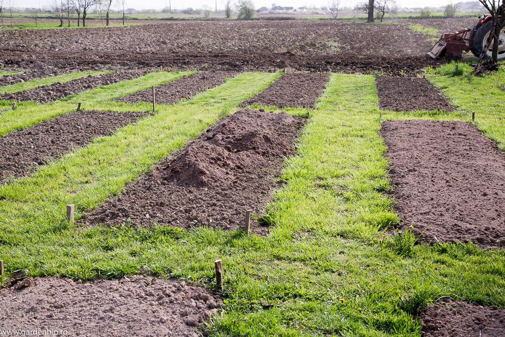 Primăvara 2016, îmbunătățirea solului din strat cu pământ fertil din pădure