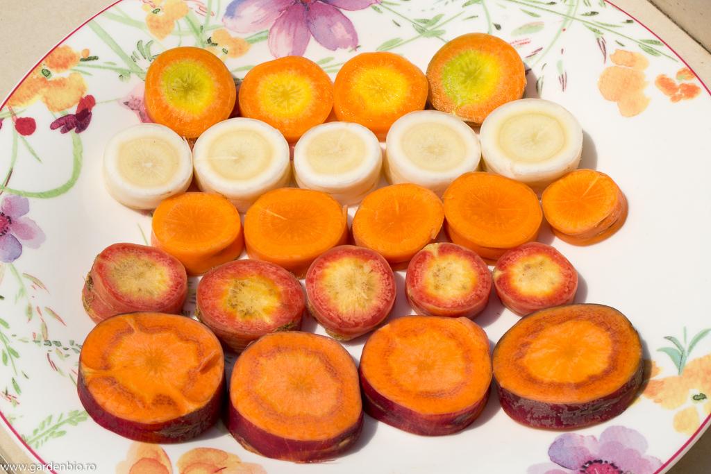 Rondele de morcovi, diferite soiuri