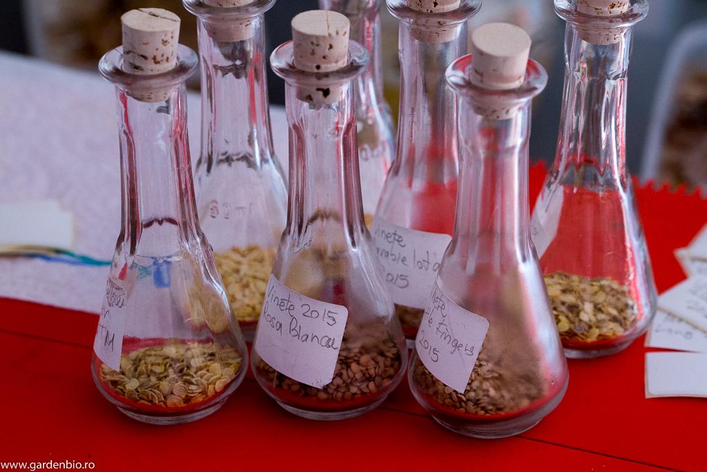 Pentru a-și păstra rata de germinare ridicată, semințele le depozitez în recipiente de sticlă cu dop etanș, în frigider