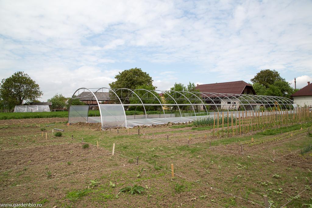 Solarul pregătit pentru montarea foliei finale