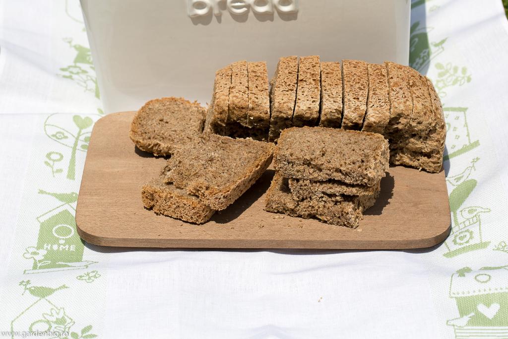 Pâinea obţinută din grâu ancestral