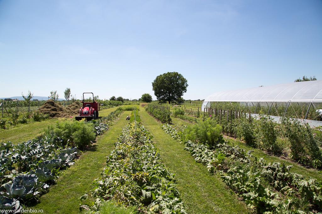 Se conturează ferma Gardenbio