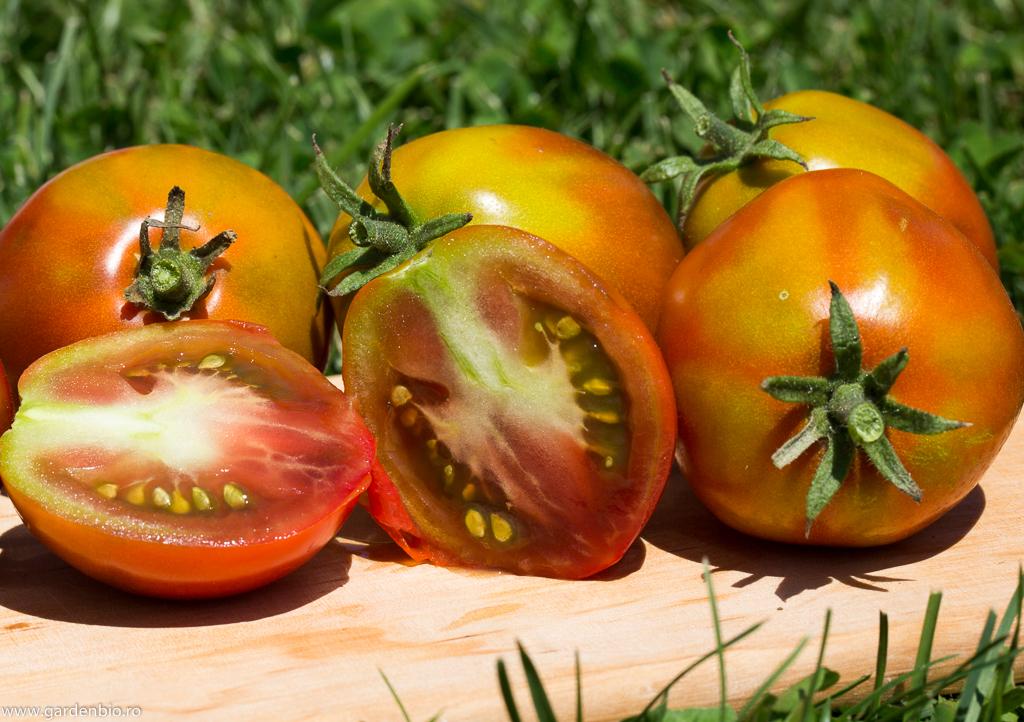 Tomate Japanese Black Trifele