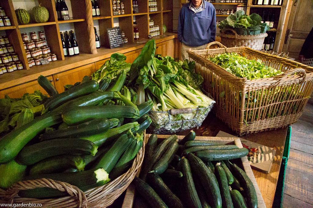 La intrarea în fermă o dată pe săptămână vin clienţii după legume ecologice, cu comandă în prealabil